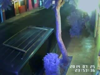 Уличная камера засняла секс двух развратников