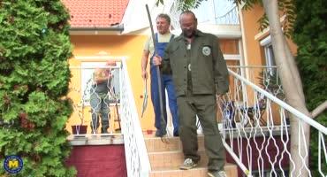 Старые хрычи дерут молоденькую хозяйку дома