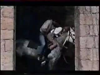 Мужик оттрахал сучку на лошади